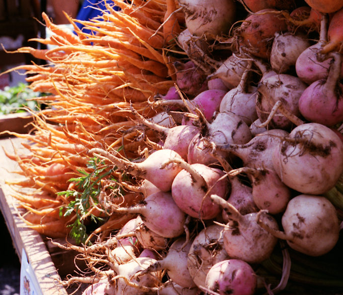 Can't stand the heat? Go visit a farmers market!