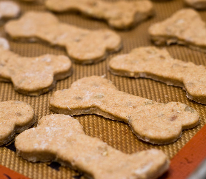 Healthy Food for our Furry Friends
