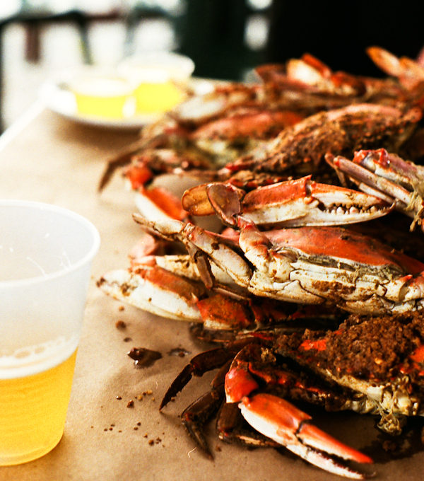Don't Bother Us, We're Crabby!